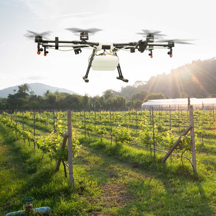 drones-help-feed-the-world